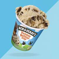 Ben&Jerry's Peanut Butter Cup 465ml